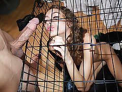 Fine Chicks Get Pounded